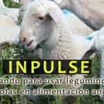 El grupo operativo INPULSE presenta sus principales conclusiones