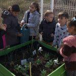 Los escolares de la Zona Oriental de Huesca recogen los frutos de sus huertos escolares