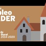 LEADER, diversificación del empleo rural en el PDR.