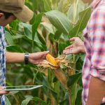 27 nuevos proyectos de cooperación en el sector agroalimentario apoyados por el PDR